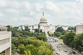 Around Town: Things to Do in Washington DC