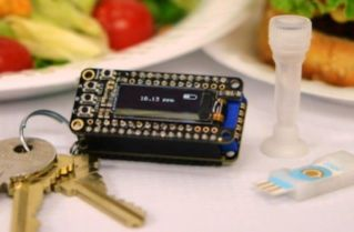 Keychain Detector Could Catch Food Allergens Before It's Too Late image