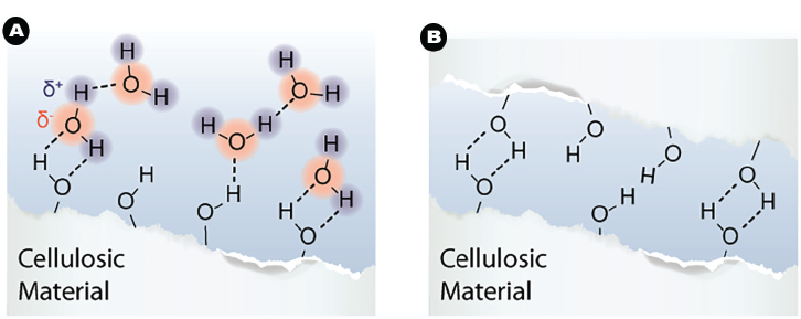 cellulosic-material-hydrogen-bonds