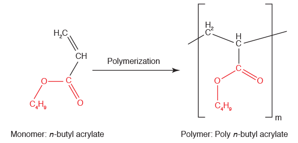 n-butyl acrylate undergoes polymerization to create poly n-butyl acrylate