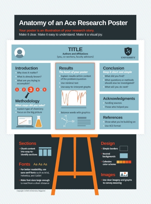 anatomy of an ace research poster infographic