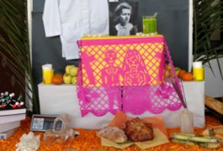 Honoring Marie Curie on Day of the Dead image